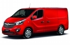 Vauxhall Vivaro LWB low 2015 to 2019 Rear Door Ladders